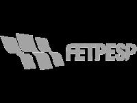 FETPESP Federação das Empresas de Transporte de Passageiros do Estado de São Paulo