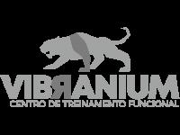 Vibranium Centro de Treinamento Funcional